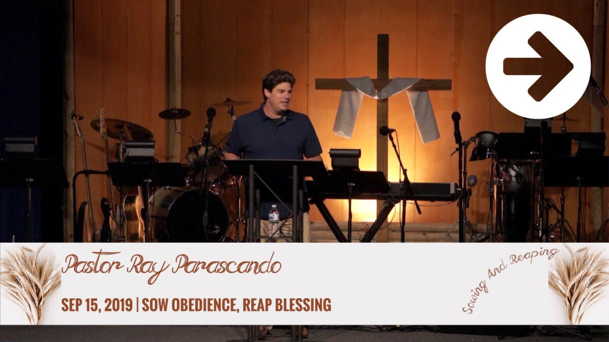 Sow Obedience Reap Blessing Image